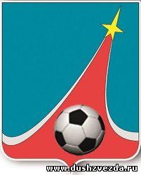 Федерация футбола города Люберцы открытый кубок 2014